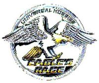 Eagkle's Race, Eagles Collectible, Universal Hobbies